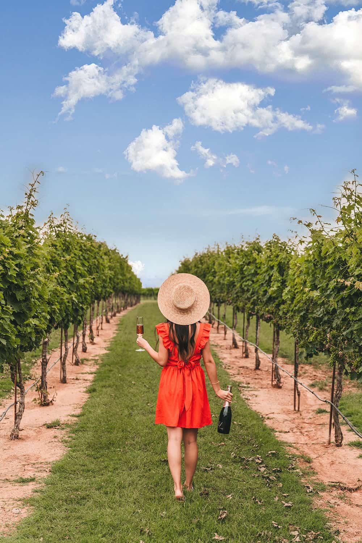Grape Creek Vineyards in Fredericksburg, Texas